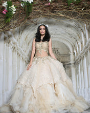 Load image into Gallery viewer, Elegant Embroidered Ballgown - Archana Kochhar India