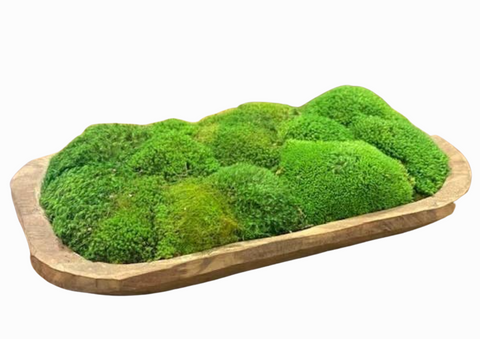 Moss Medium Carved Bowl