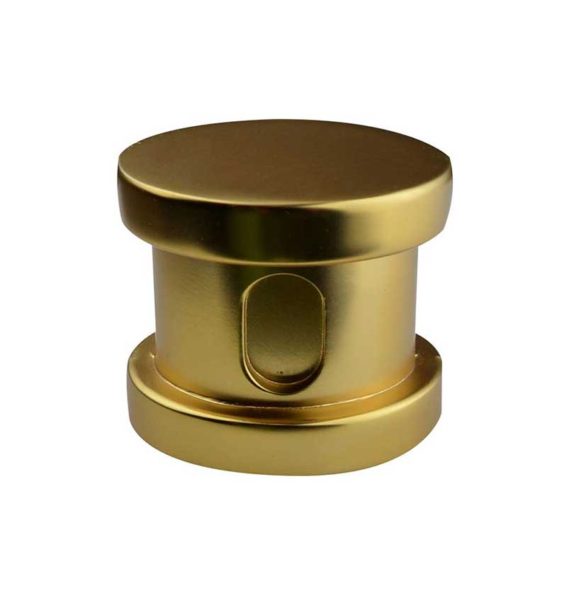 SteamSpa Steamhead with Aromatherapy Reservoir in Polished Gold 2