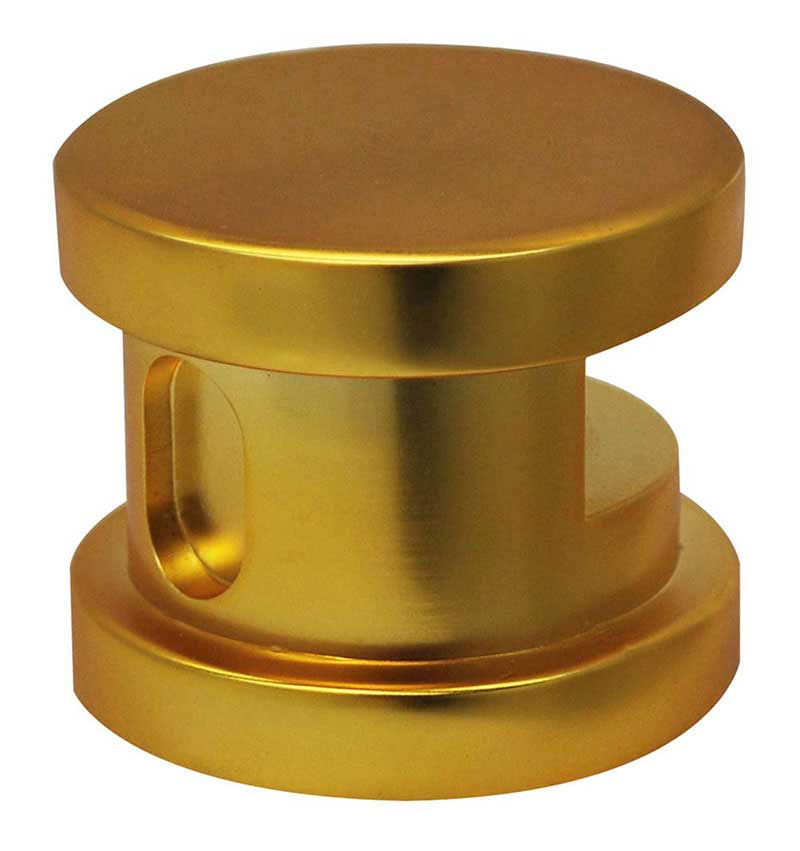 SteamSpa Steamhead with Aromatherapy Reservoir in Polished Gold