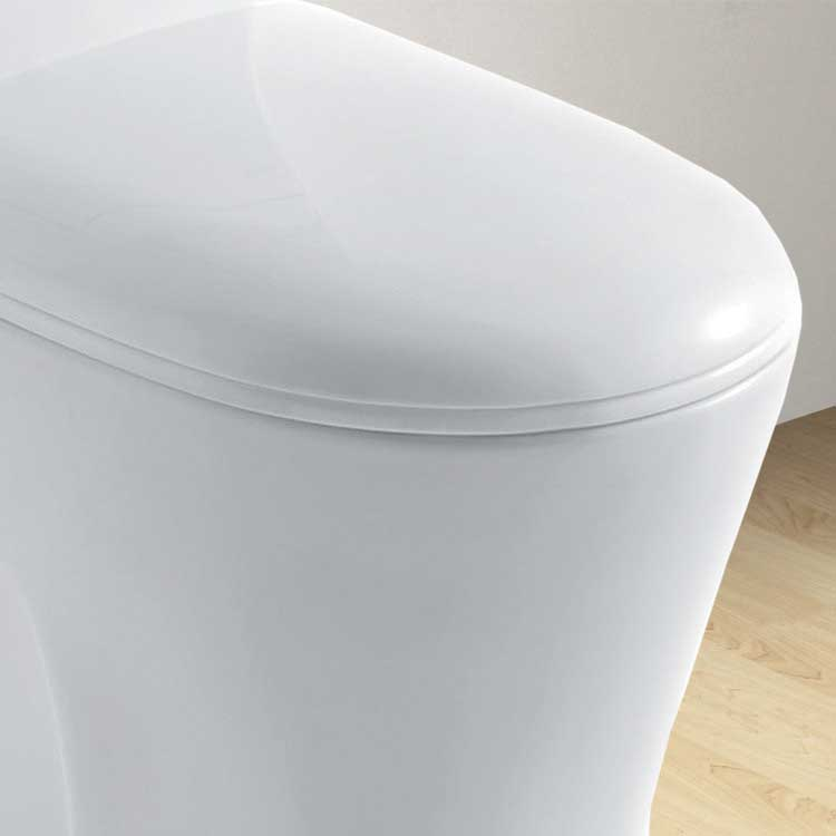 Ariel Bath Royal Dual Flush Elongated Toilet 1 Piece 3