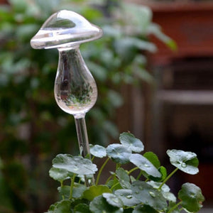 Glass Flower Water Feeder