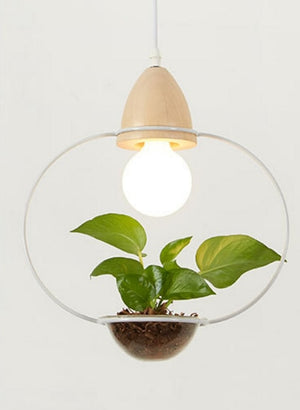 Contemporary Style Plant Pendant Light