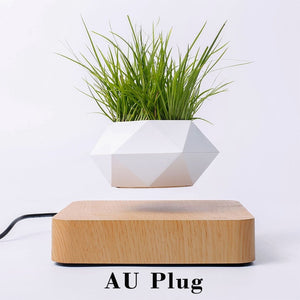 Levitating Magnetic Nordic Desk Planter