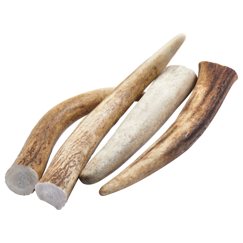 """Tips"" Grade A Whole Elk Antler Dog Chews - 4 Pack!"