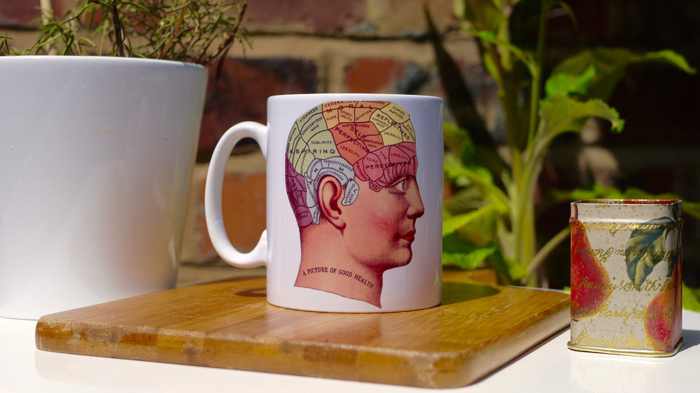 A phrenology / brain mug, psychology gift, featuring the different parts of the brain, with the caption 'A picture of good health'
