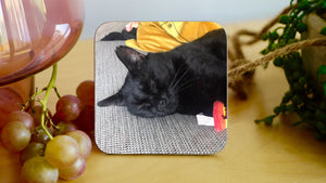 Load image into Gallery viewer, Personalised Cat Coaster