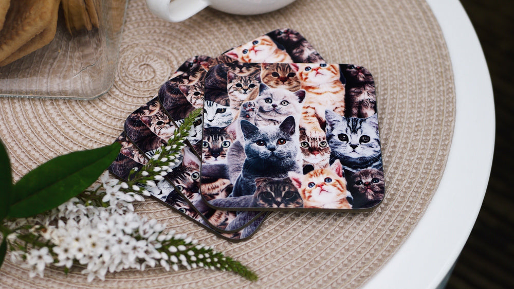 Crazy Cat Coaster - Kitsch Republic