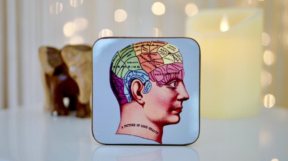 Phrenology Brain Skull Coaster - Kitsch Republic