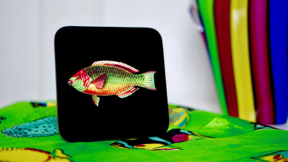 Rainbow Fish - Fishing Coaster - Kitsch Republic