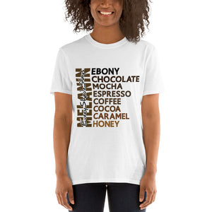 Melanin Slays Black Women T-Shirt