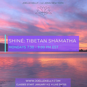 ONLINE LIVE - January 2021 MONDAY Shiné: Traditional Tibetan Shamatha Meditation - GROUP CLASSES (Level One)