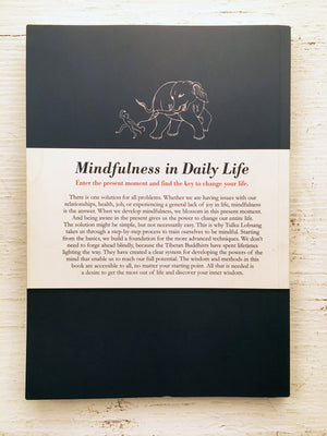 Mindfulness in Daily Life (Book)