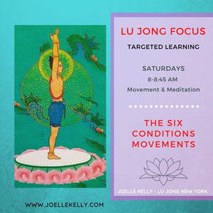 ONLINE: LJ Focus on Movements - WEEKEND