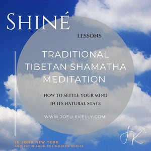 ONLINE LIVE Special Private 1-2-1 Shiné: Traditional Tibetan Shamatha Meditation - (Level One)