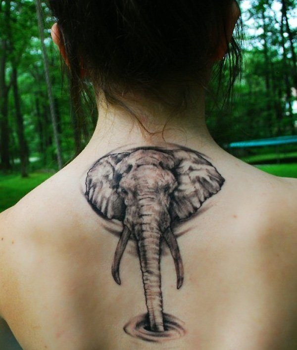 tatouage elephant dos