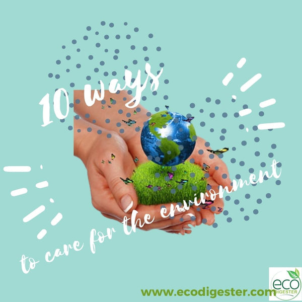 10 Ways to Take Care of the Environment and Make a Difference