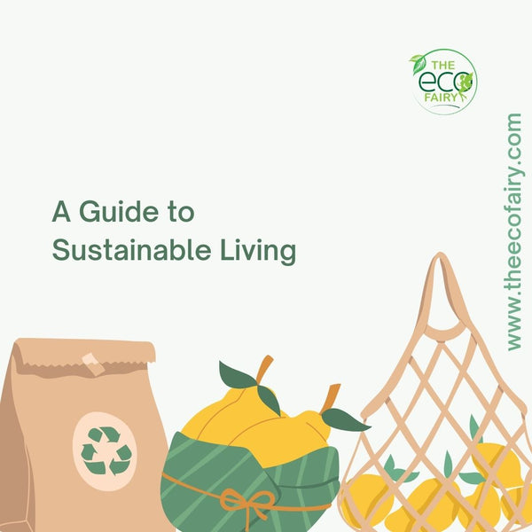 A Guide to Sustainable Living
