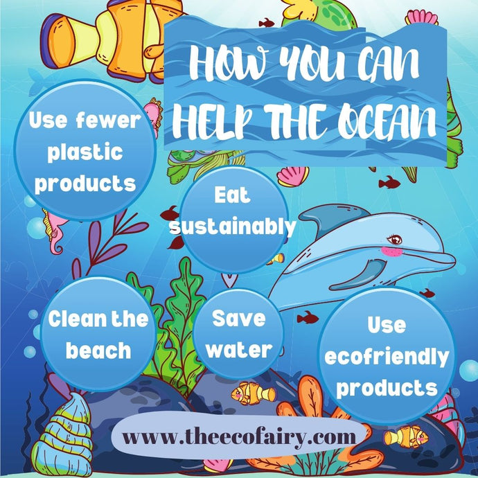 Six Ocean-Friendly Habits to Help Protect Marine Life