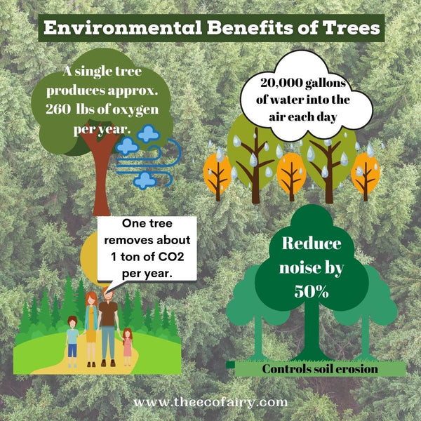 REASONS WHY TREES ARE SO IMPORTANT TO THE ENVIRONMENT