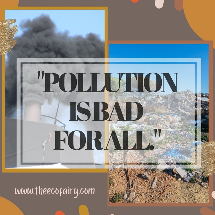 Pollution Is Bad For All