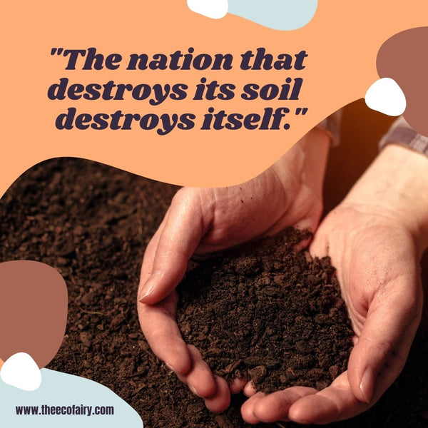 Stop Treating Soil Like Dirt