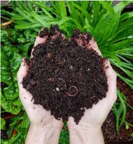 International Compost Awareness Week May 3-9, 2020