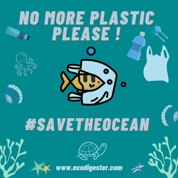 Ways You Can Help Save the Oceans