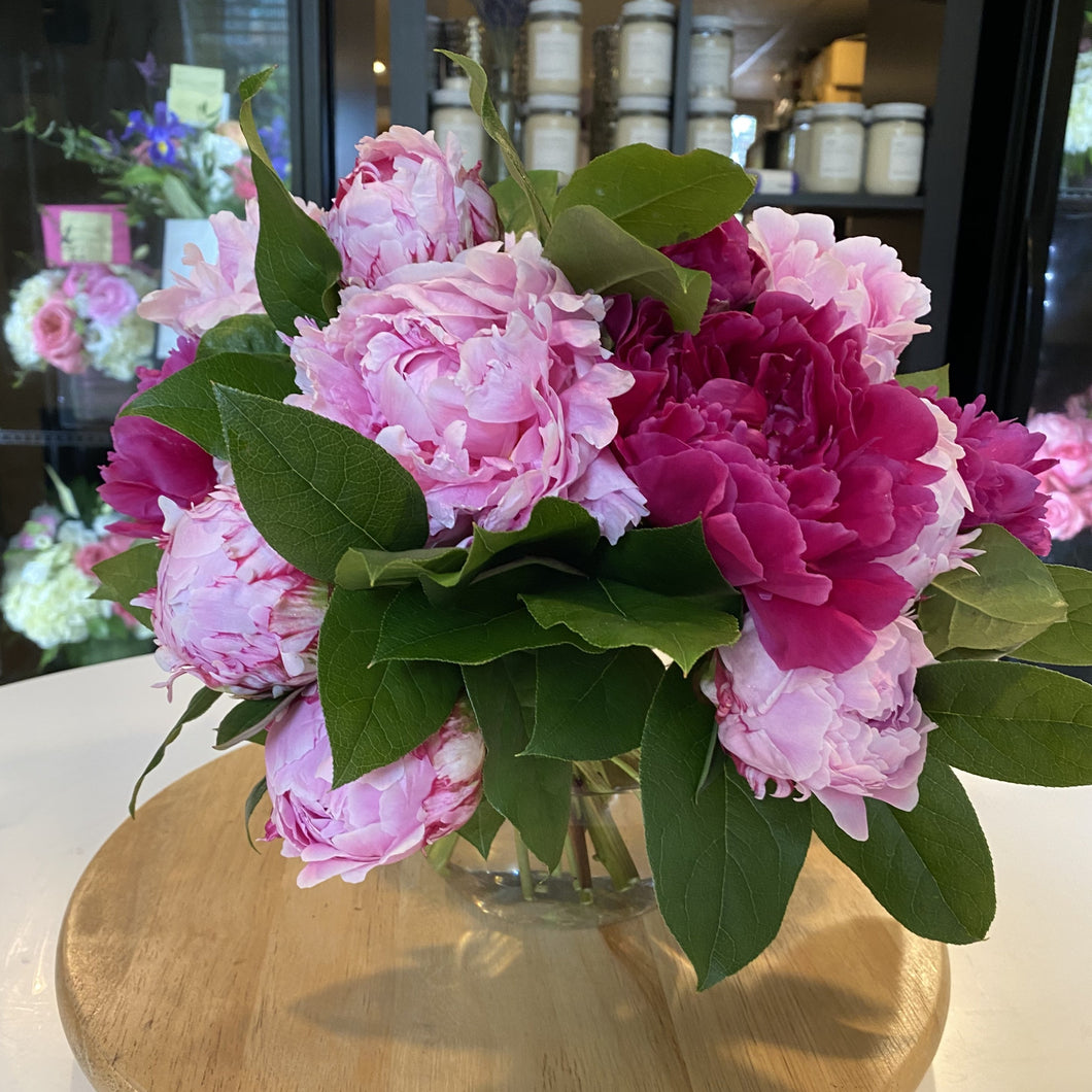 Mother of Pearl:  ~25 Peonies