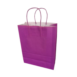 "Twisted Handle Kraft Paper Bags Coloured 12""x17"""