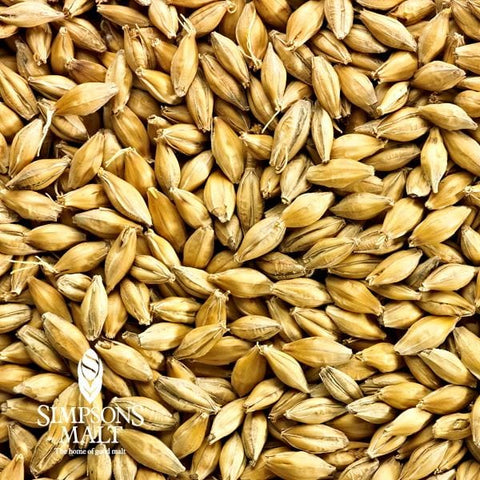 MALT 2-ROW GOLDEN PROMISE - SIMPSONS