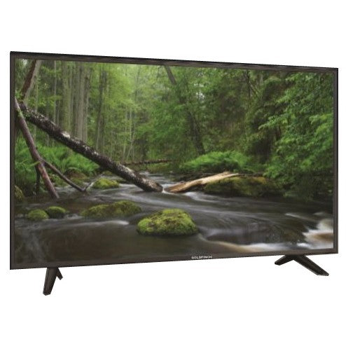 "GOLDFINCH 24"" AC/DC TV"