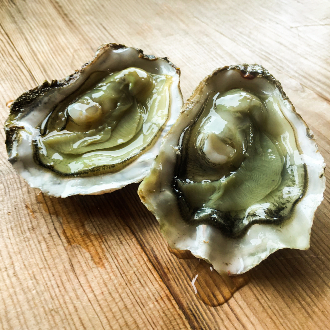 Churchill Upgrade - Rock Oysters