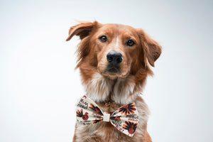 """Gobble till you wobble"" Turkey Bow Tie - love dog republic"