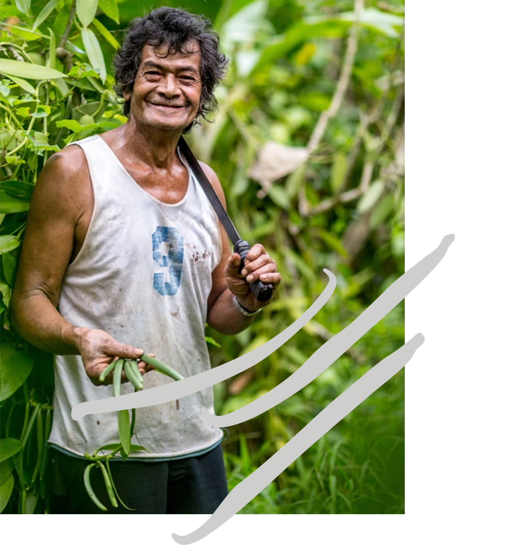 man in the bean crop holding vanilla beans