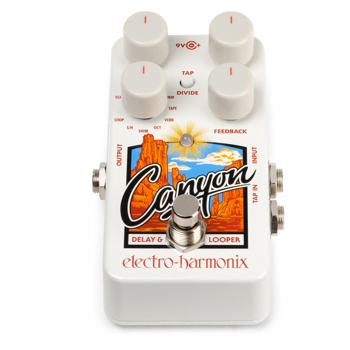 Electro-Harmonix Canyon Delay And Looper Guitar Effects Pedal with 9.6V Power Supply