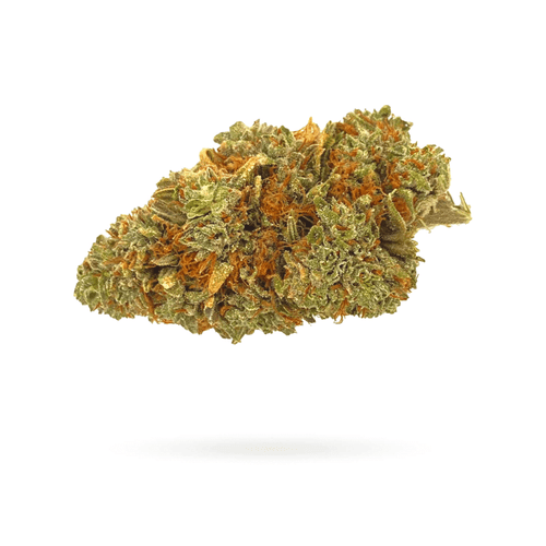 CBG/CBD Aromablüte 'Orange Haze'