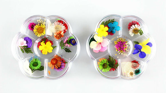Dry Flowers Nail Decor - Round Clear Case