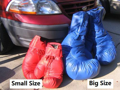 Boxing Gloves (Big) (One Pair)