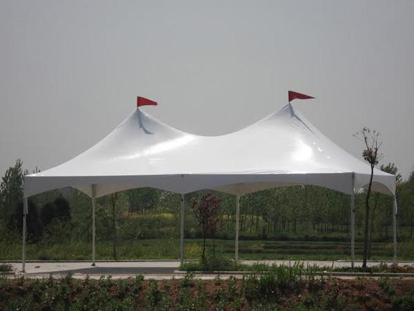 Marquee Tent 20'x30'
