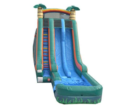 22'H 2-Lane Palm Tree Slide W n D