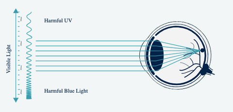 Blue light with no glasses