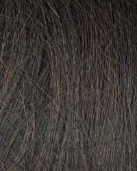 Zury Sis Naturali Star Natural Yaki Texture Wig - Nat-H Raina - Beauty Empire