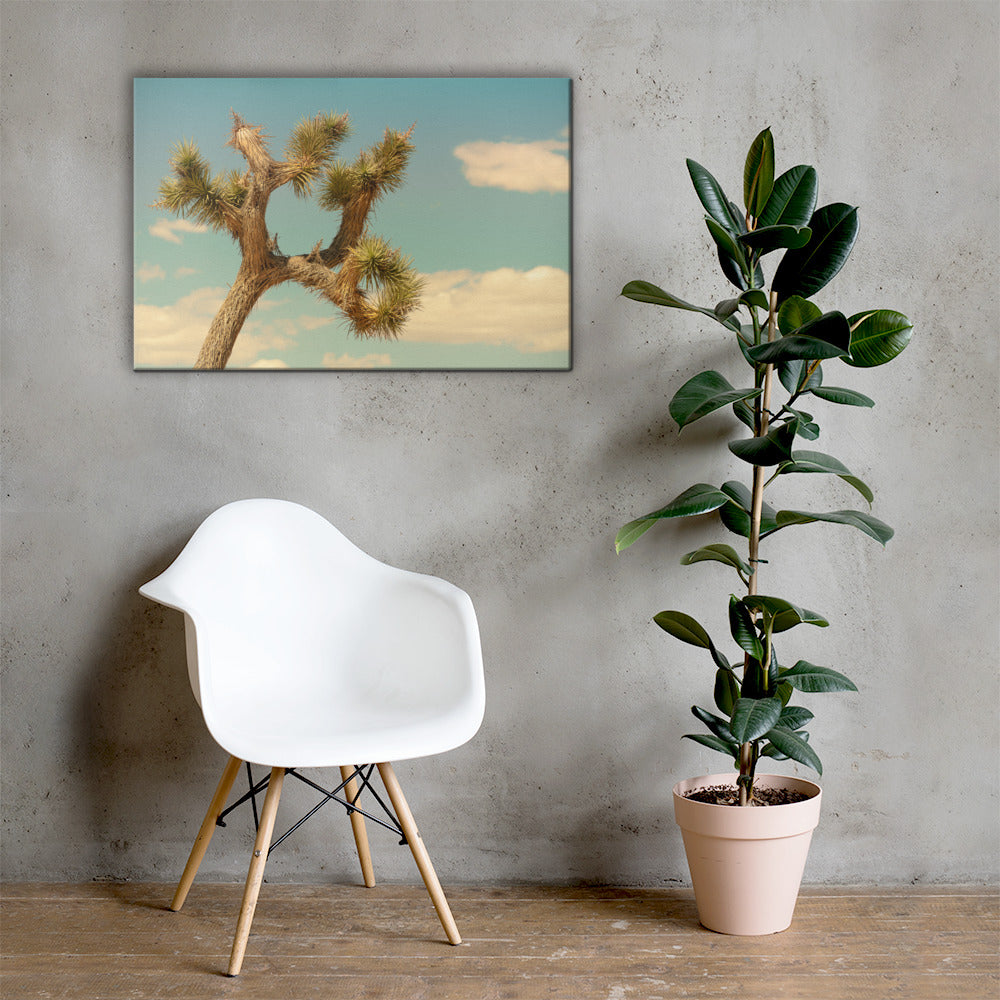 Joshua Tree Tree Canvas