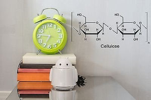 Wall Sticker Vinyl Decal Chemical Formula Cellulose Decor of Pupils n284