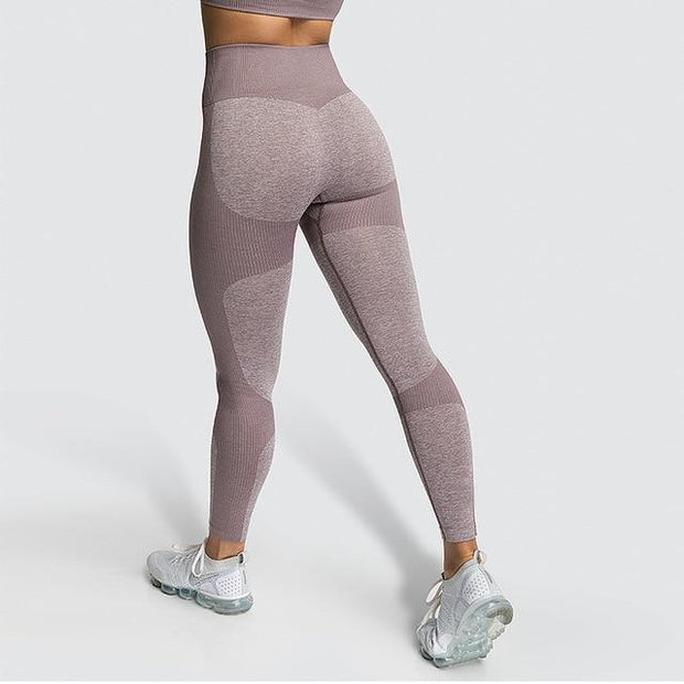 Hyperactive Honey Leggings - Dolton active wear