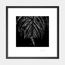 Load image into Gallery viewer, Silver Fern