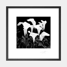 Load image into Gallery viewer, Easter Lillies