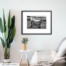 Load image into Gallery viewer, Horses foal