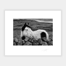 Load image into Gallery viewer, Donegal Horse